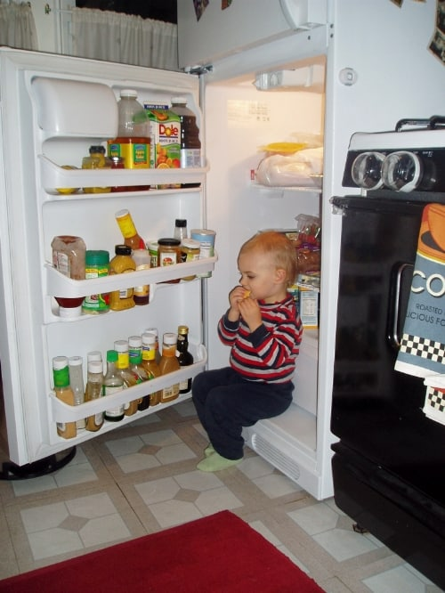 Hungry Boy in Fridge