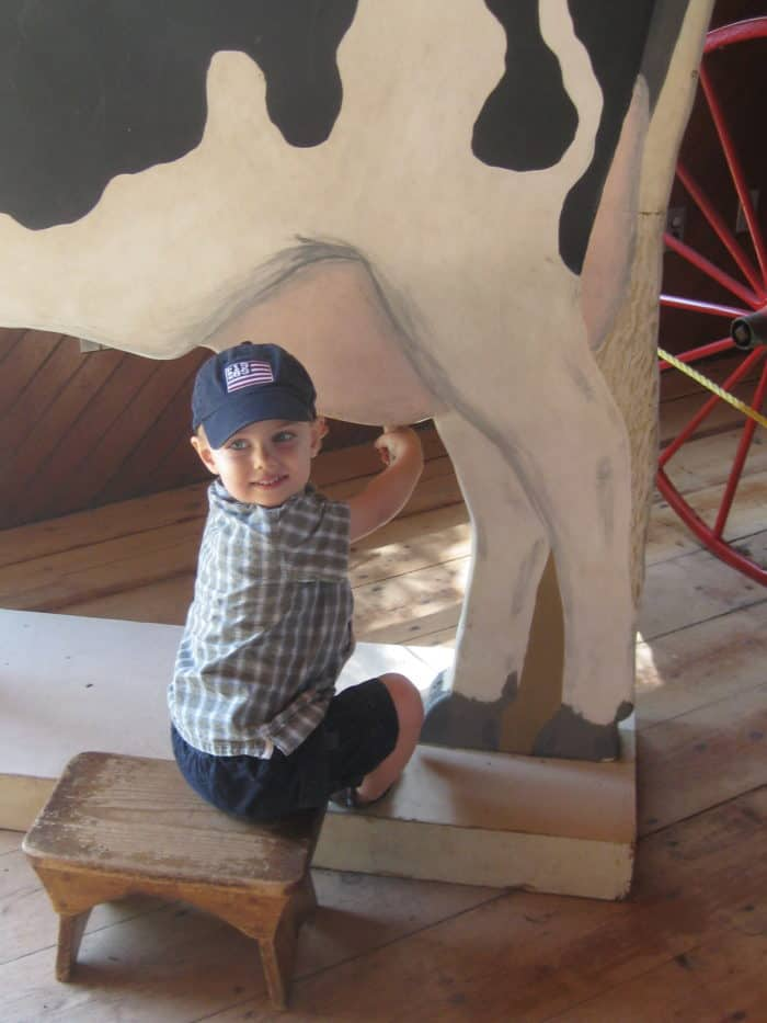 Check out Your Local Farm for Free Fun With the Kids: Cows, Fairy Dust, and a Cat