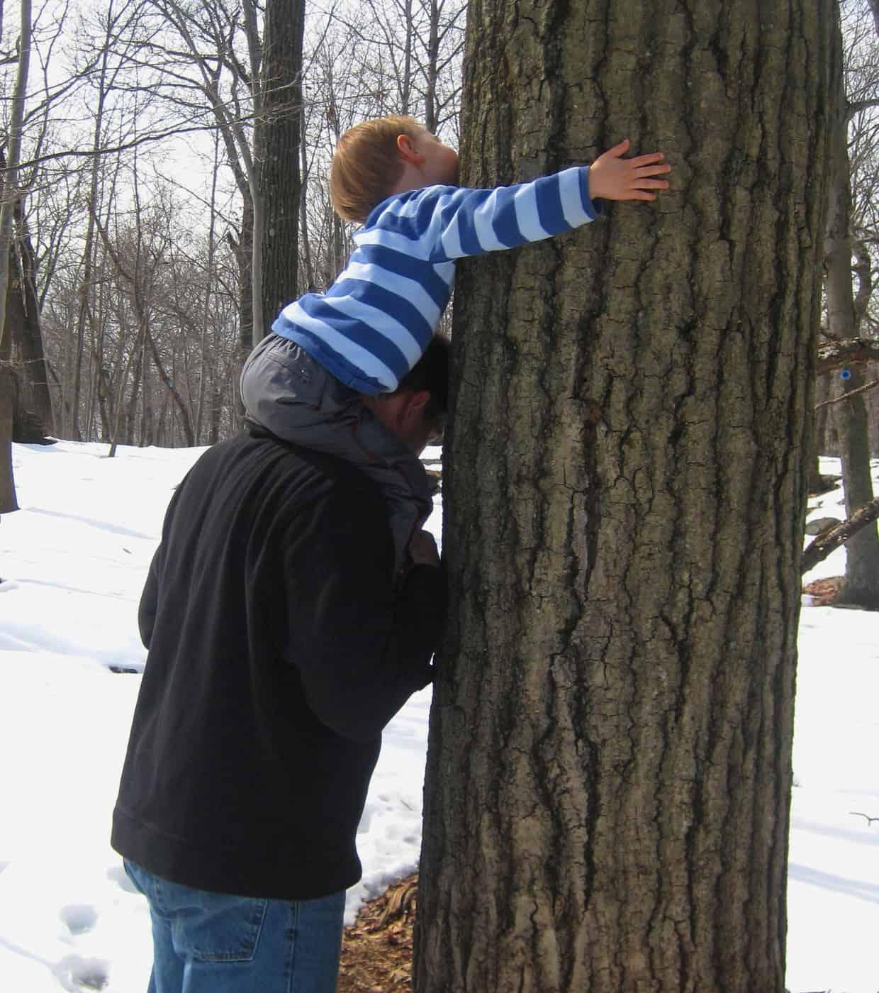 Raising a Tree Hugger
