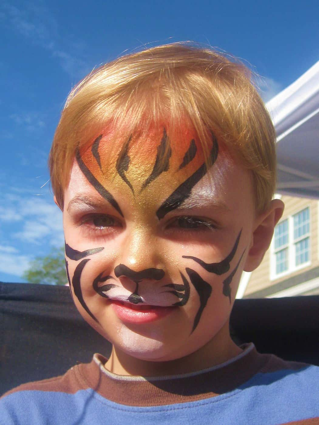 Wordless Wednesday: Landon's First Face Painting
