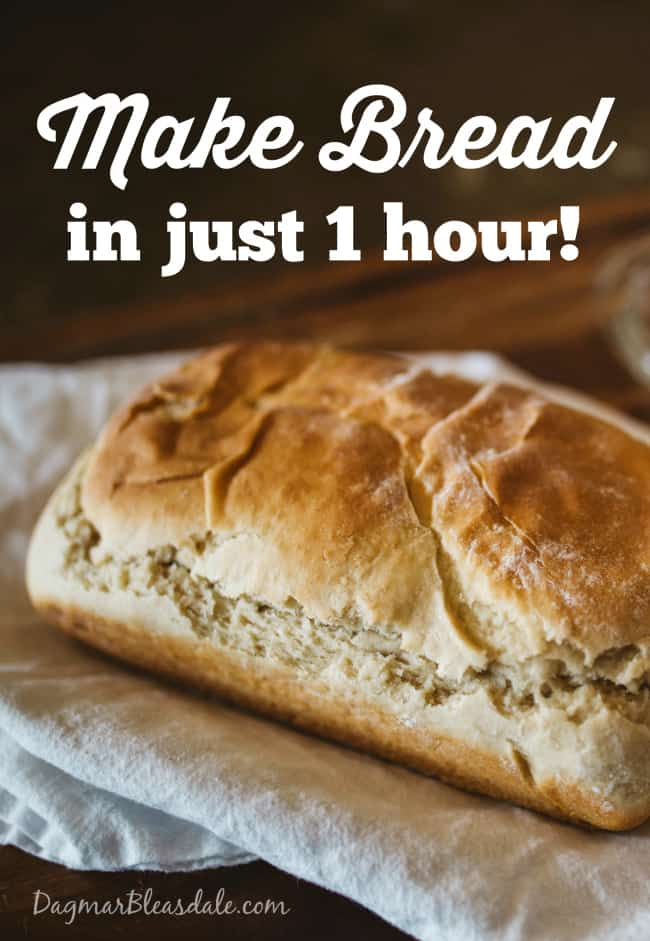 Bake Fast and Easy Bread in An Hour, DagmarBleasdale.com