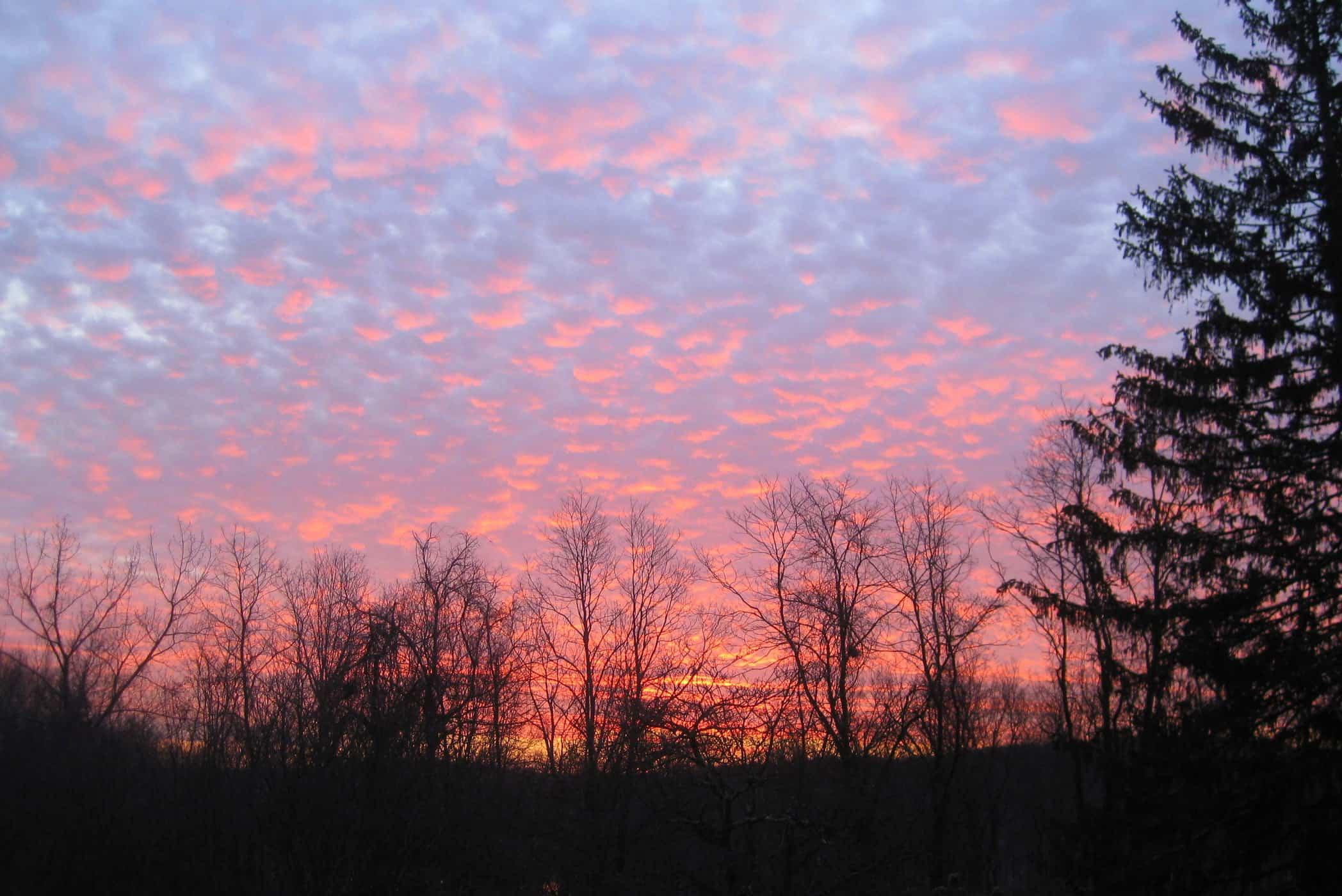 sunrise in Westchester, NY