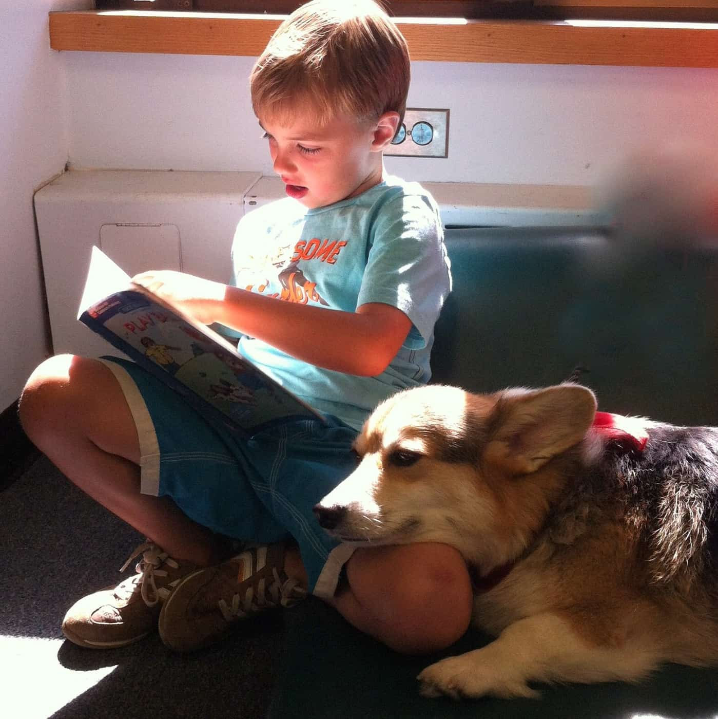 Wordless Wednesday — Reading to the Library Dog