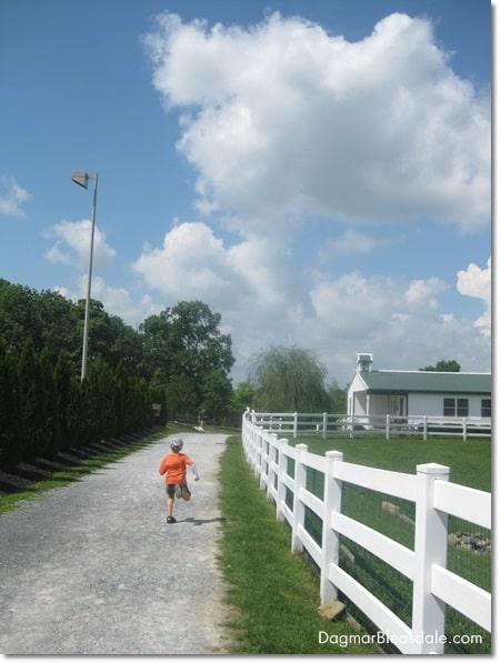The Amish Farm and House, Pennsylvania