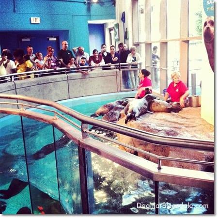 Maritime Aquarium in Norwalk