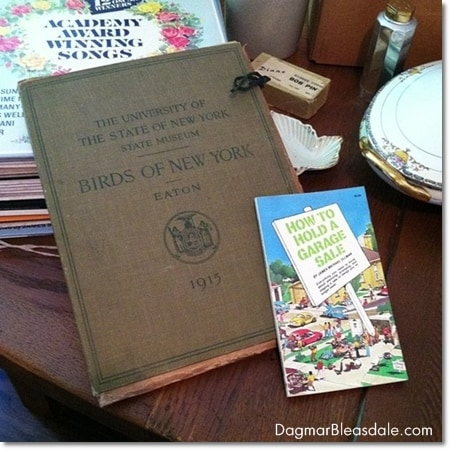 vintage finds: collection of birds of New York 1915
