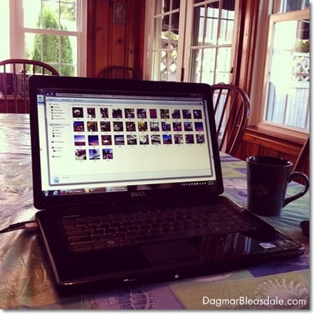 blogging in Cape May