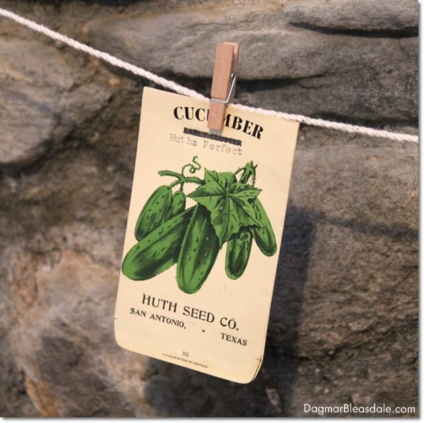 vintage seed packets banner