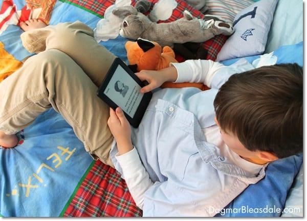 Amazon Kidle e-reader review. DagmarBleasdale.com