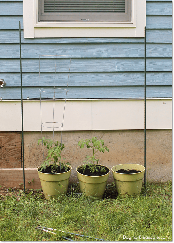 DIY Container Garden Fencing With Twist Ties