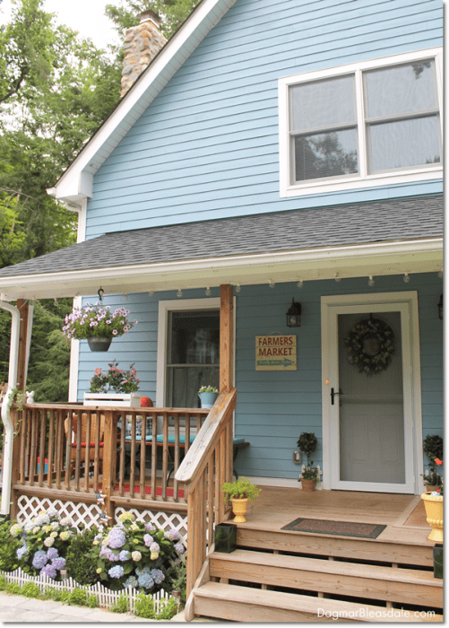 Update on Our Blue Cottage Garden