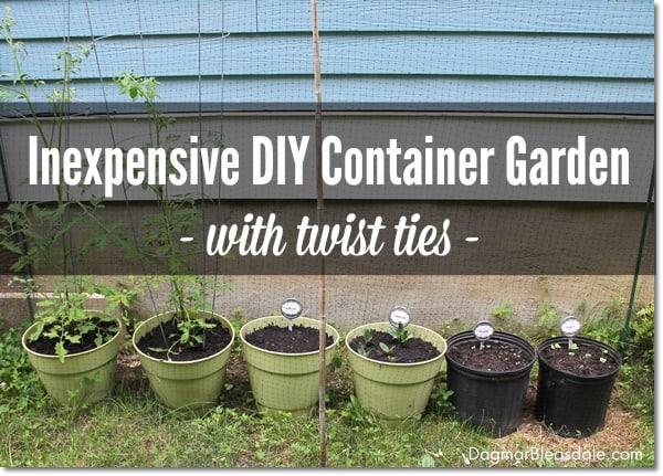 DIY container garden, DagmarBleasdale.com