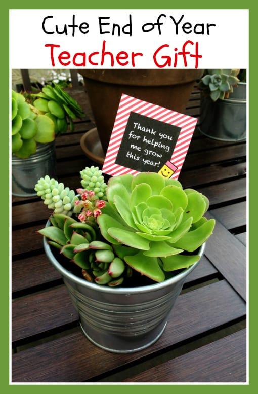 Easy DIY Teacher Gift Ideas, helping me grow
