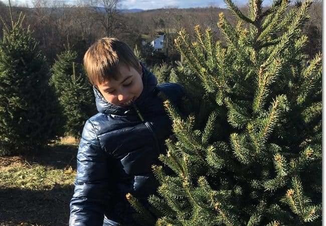 Get a Real Christmas Tree And Create Fun Family Memories