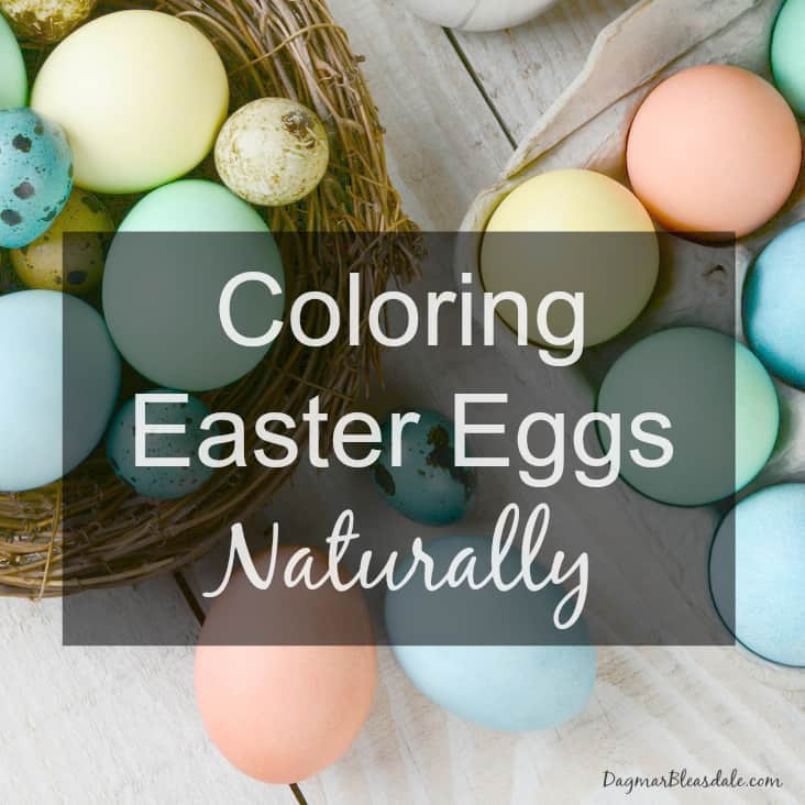 coloring eggs naturally, DagmarBleasdale.com