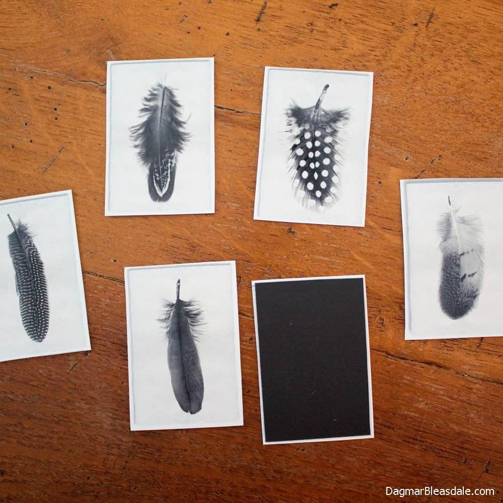DIY Fridge Magnets With Junk Mail, DagmarBleasdale.com
