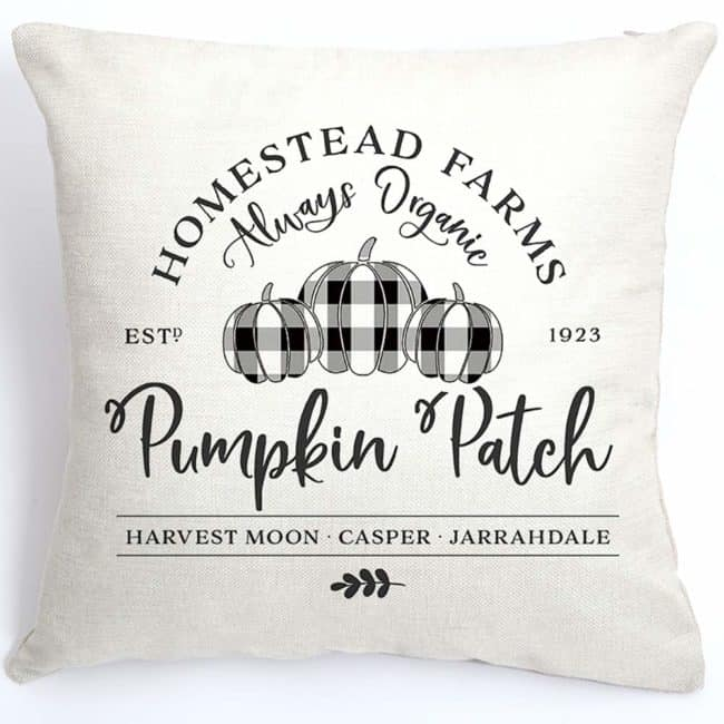 fall pillows pumpkin patch