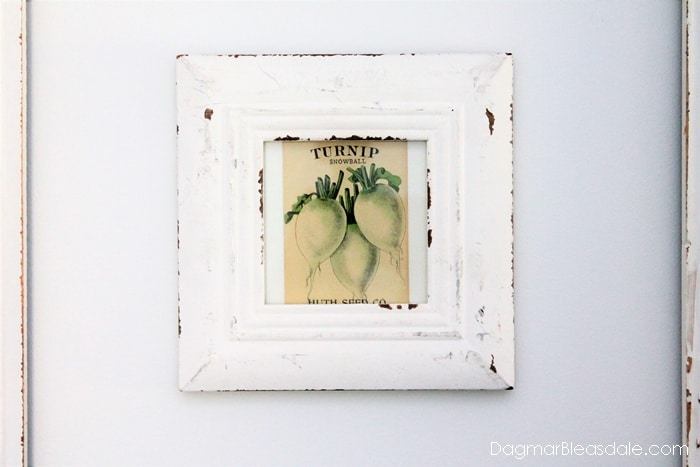 Vintage Seed Packets Decor, Framed vintage seed packet