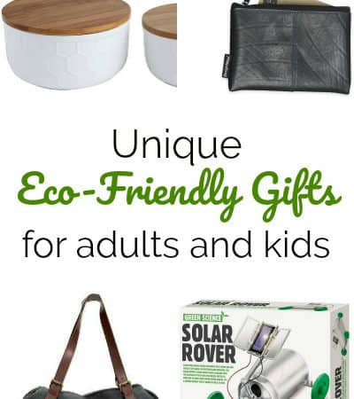 The Best Eco-Friendly Gifts for Kids and Adults
