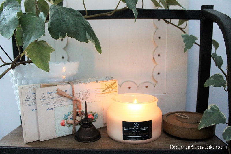 Chesapeake Bay Candle: Chestnut & Acorn Small Jar Candle